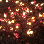 Fall Mix Hand Dipped Silicone Teeny Bulb Electric Light Strand
