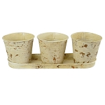 Planter 3pc Bucket w/tray Buttercream