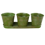 Planter 3pc Bucket w/Tray Moss