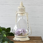 OLD WHITE ONION LANTERN