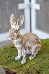 Sitting Hill Hare | White Wash | 11.25