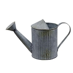 Galvanized Watering Can Small