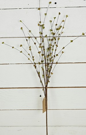 24in Willow Sprouts Spray