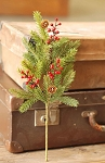White Spruce with Berries Pick | 16