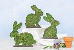Topiary Bunny Tabletop 3 Asst.