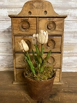 Primitive Potted Waxed Tulips  11