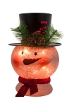 Glass LED Snow Head (plug-in) - 7 x 10 in