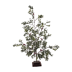 Green Leaf with Red Berry Tree - 3.75 x 3.75 x 24 in