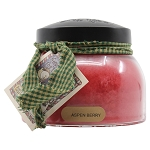 A Cheerful Giver Aspen Berry Mama Jar Candle, 22-Ounce