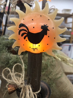Rooster Sunshower Bulb